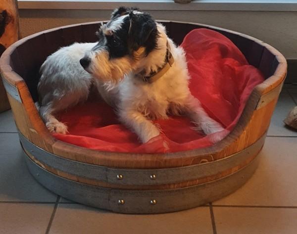Das Hundefass, ein Hundekorb aus Eichenholz- niedere Ausführung!